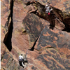 Climbing Partners Work on Overhang, Eldorado Canyon, 401106B_058