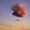 Puffy Cloud, Flying Pig